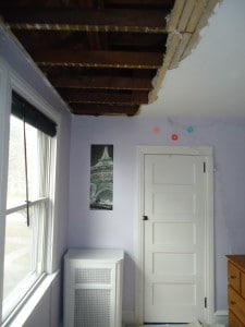 Plaster Ceiling Repair and Painting